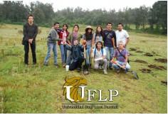 UFLP - Universidad Fray Luca Paccioli Cuernavaca Morelos Centro