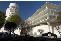 ITESM Educación Ejecutiva Tecnológico de Monterrey
