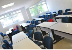 UNID - Universidad Interamericana para el Desarrollo, Licenciaturas Ejecutivas
