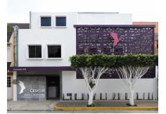 Foto CESIGUE Centro de Estudios e Investigación Guestálticos Xalapa Veracruz 005237