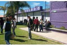 UPI - Universidad Privada de Irapuato Irapuato Guanajuato Centro