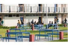Centro Universitario UTEG Guadalajara Jalisco Centro