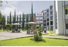 Foto Centro UMAD Universidad Madero Puebla Puebla Capital